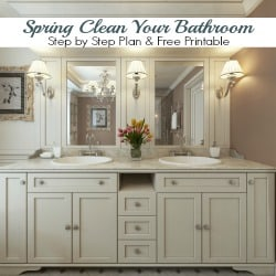 The grout is a mess; you can barely see yourself in the mirror, and the medicine cabinet is overflowing with so much junk you can hardly close it. It's that time of year when we feel compelled to spring clean our homes. Let's give our bathroom the overhaul it deserves. Spring clean your bathroom. Step by step plan and free checklist!
