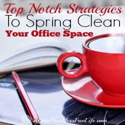 Most of us SAHM's and other entrepreneurs spend 40 hours (or more) in our office space. It can easily get ignored and neglected when trying to juggle the demands of running a household, caring for the kids, and keeping up with the to-do-list of your business. But no spring cleaning would be complete unless we tackled the office. It's time to end the winter hibernation with your junk and commit to spring cleaning your office space.