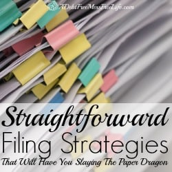 Straightforward Filing Strategies That Will Slay The Paper Dragon