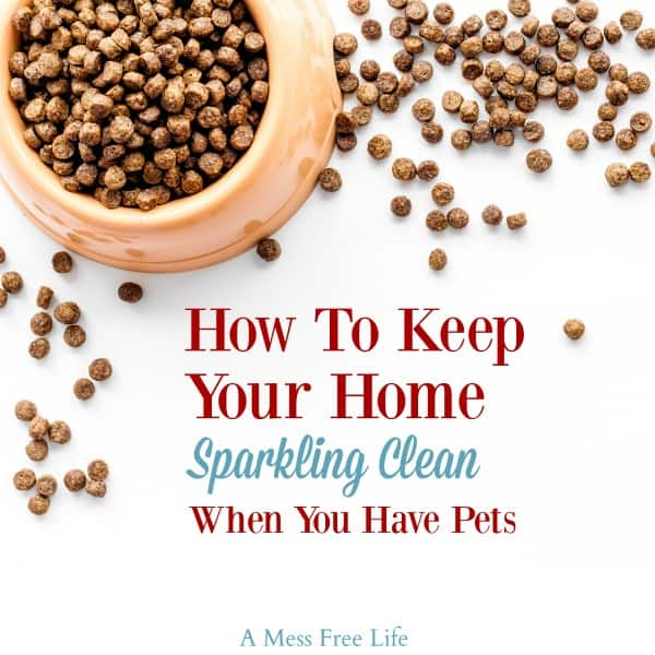 Keeping Your Home Clean With Pets Pet Friendly Cleaning Tips